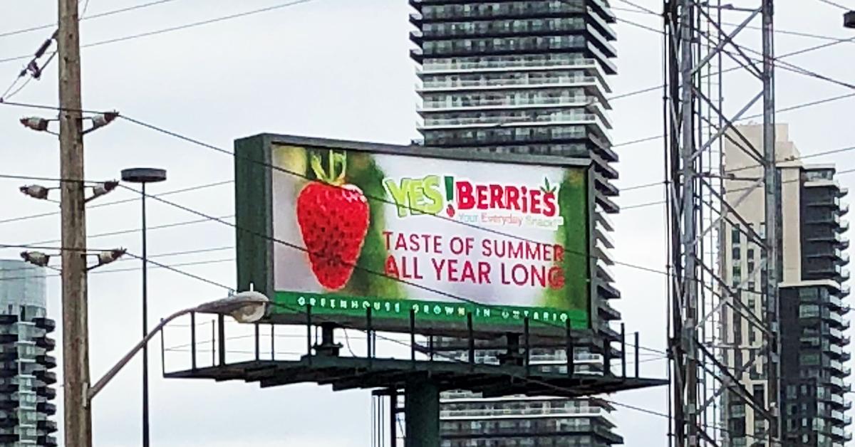 YES!Berries strawberries billboard in Toronto