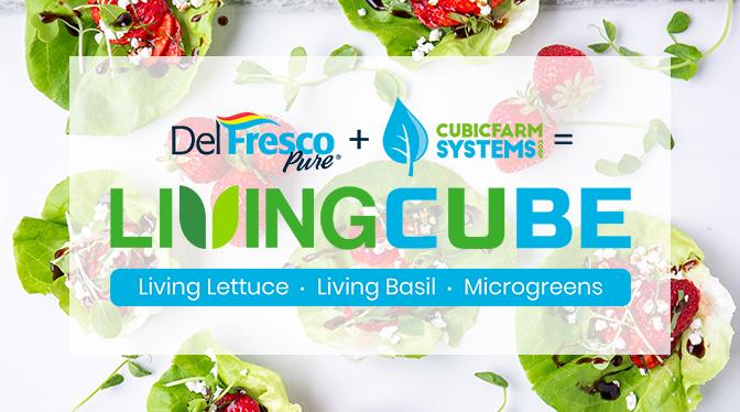 LivingCube Press Release