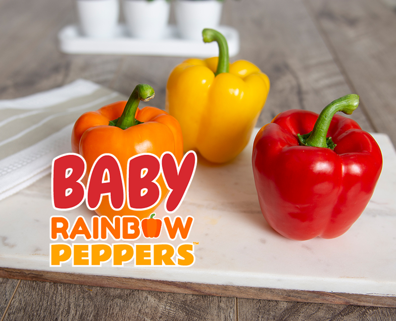 Baby rainbow peppers on the table