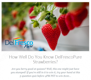 YES!Berries Quiz