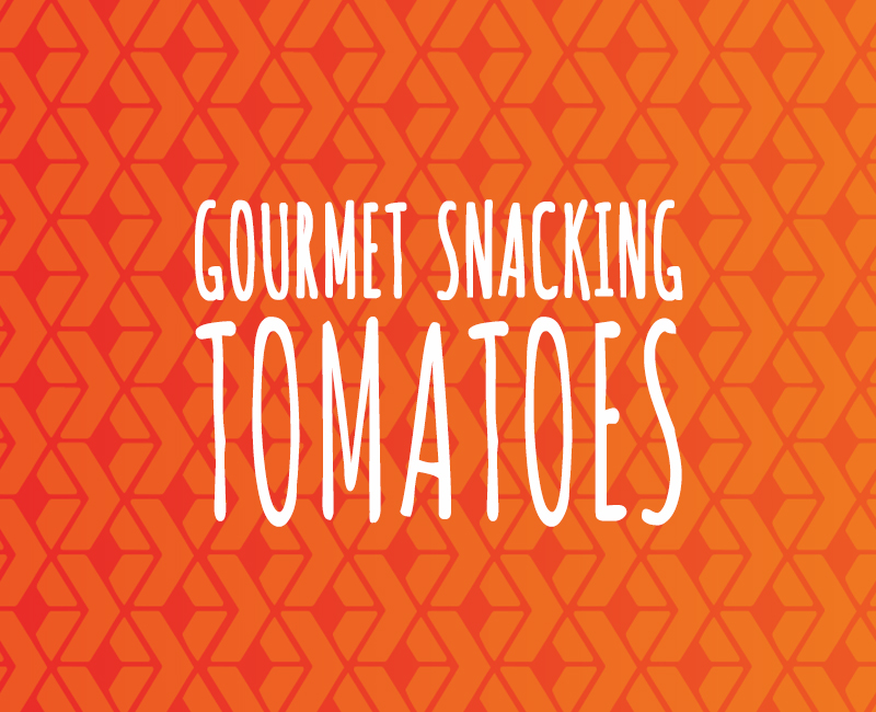 Gourmet Snacking Tomatoes