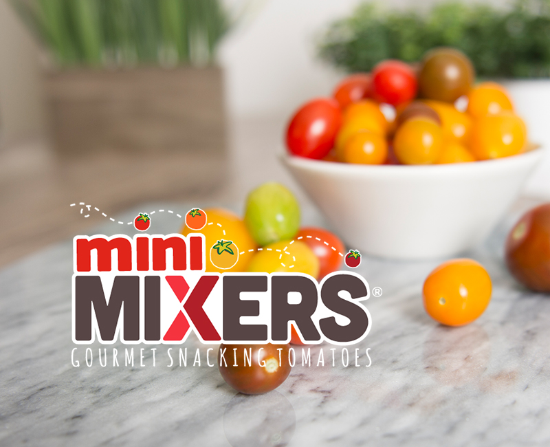 Mini Mixers in a Bowl on a Table