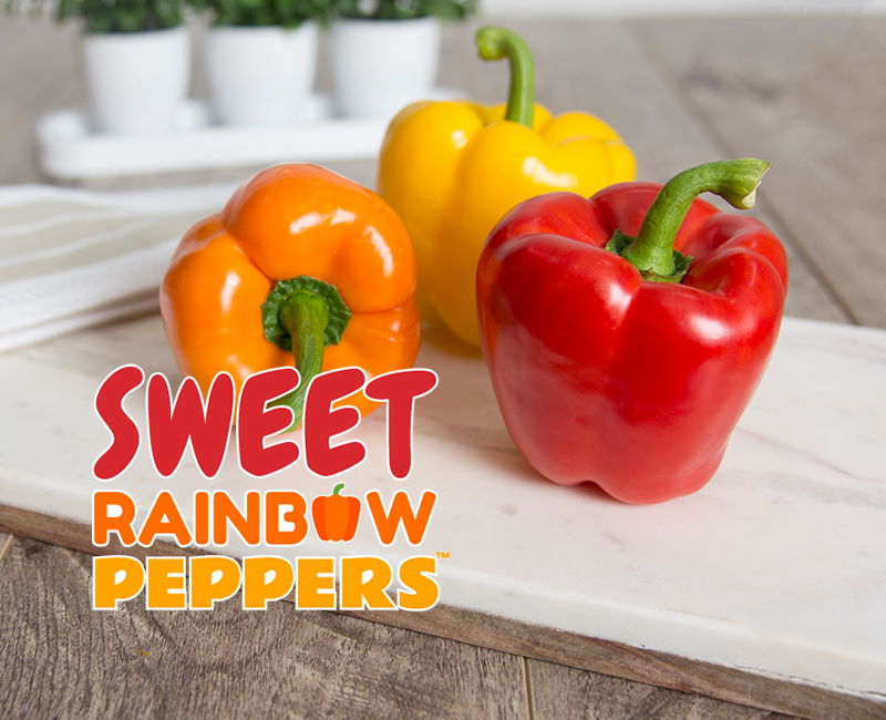 Sweet rainbow peppers on table